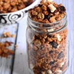 White & Chocolate Cranberry Quinoa Granola | The Housewife in Training Files