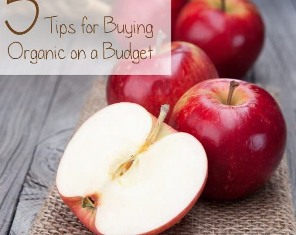 {Guest Post} 5 Tips for Buying Organic Food on a Budget