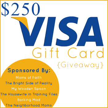 A $250 Visa Gift Card Giveaway!! {Closed}