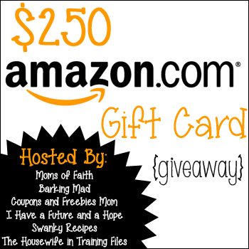 Giveaway Time! A $250 Amazon.com Gift Card {Closed}