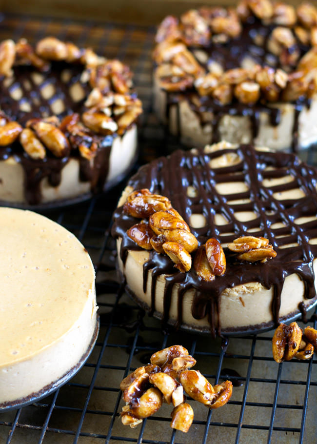 A rich and creamy dessert made over with greek yogurt! This Greek Yogurt Peanut Butter Cheesecake only tastes indulgent.  And topped with two ingredient Maple Peanut Clusters is sure to satisfy your peanut butter loving tastebuds!
