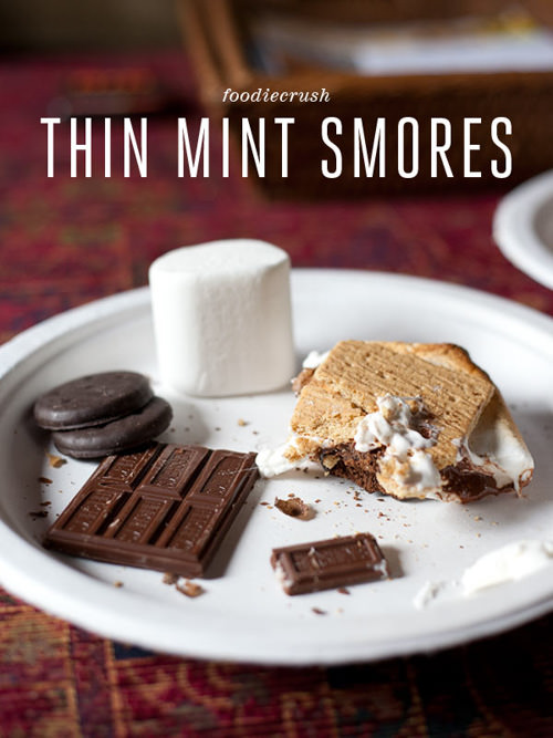 Thin Mint Girl Scout Cookie Smores | Foodie Crush