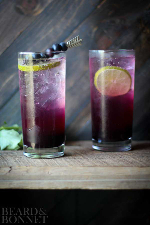 Blueberry Lavender Fizz | Beard and Bonnet