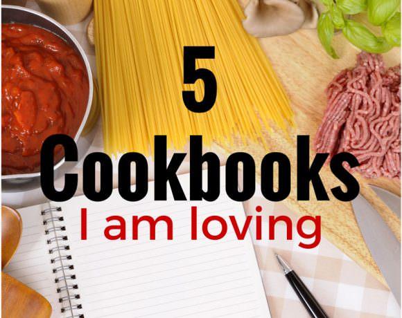 5 Cookbooks I am Loving!