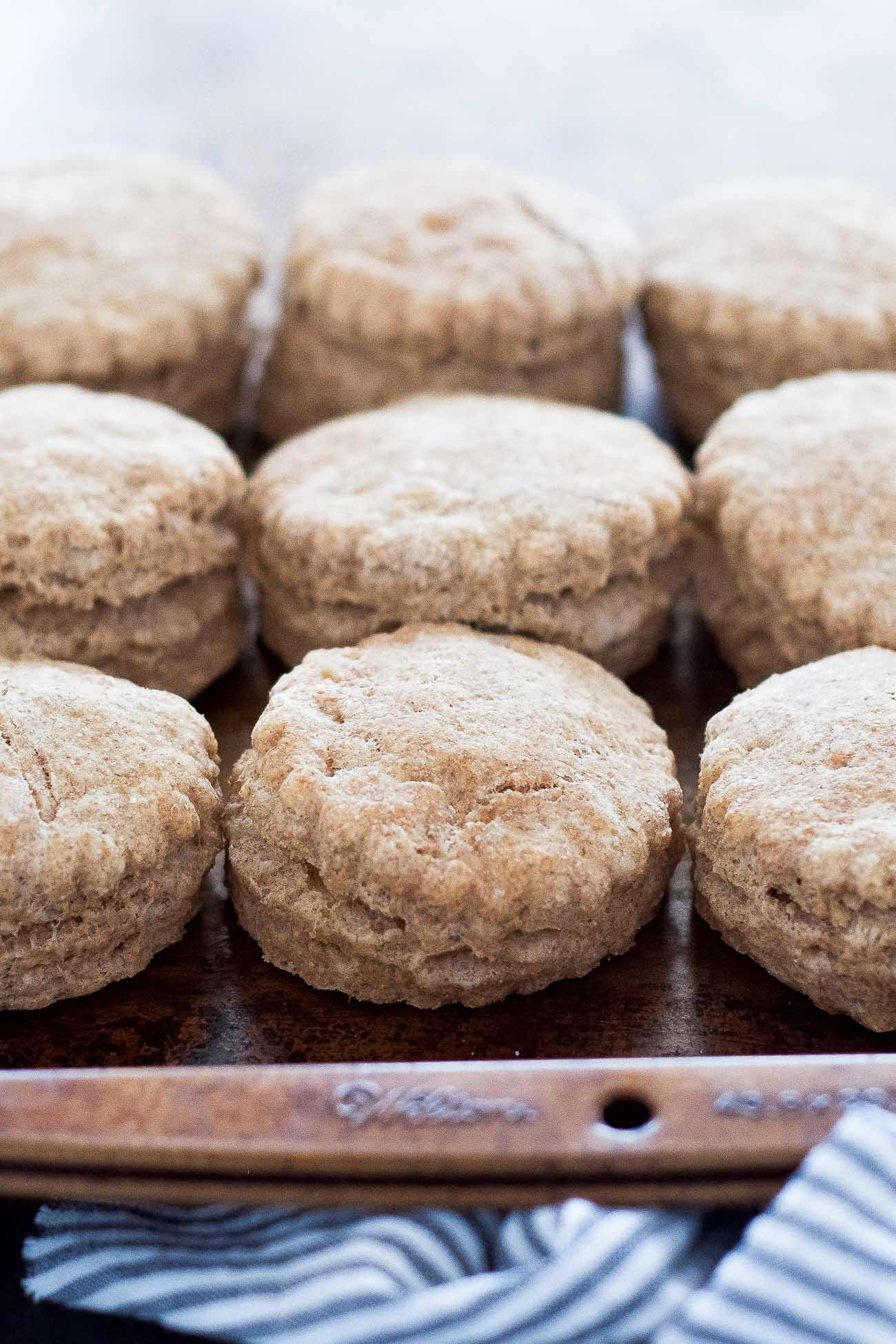 These Flaky Whole Wheat Biscuits are tender and are made with wholesome ingredients, making them guilt free. Plus they require one bowl and take only 2o minutes! These biscuits will be a family favorite for sure!