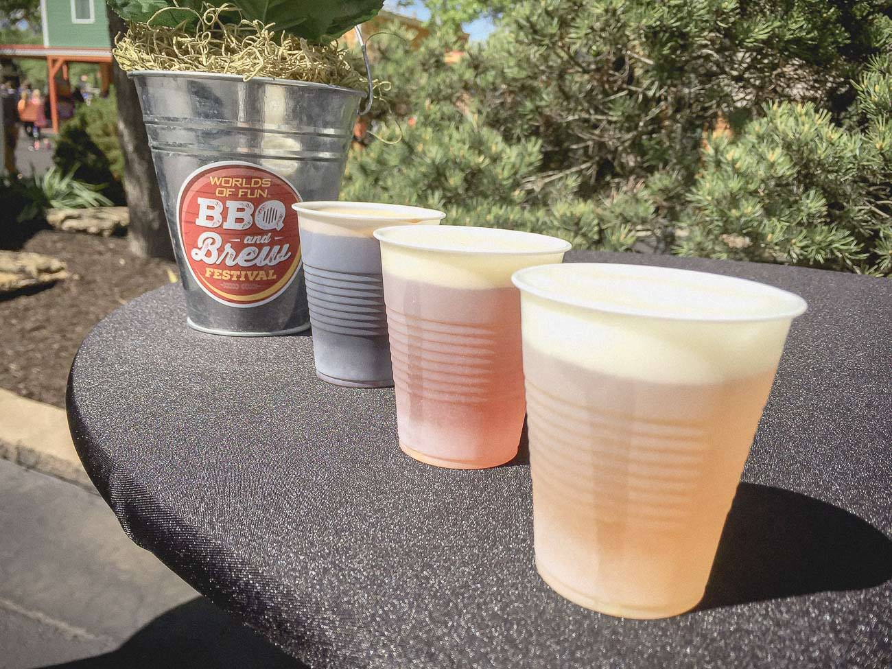 https://withsaltandwit.com/worlds-of-fun-hosts-all-american-bbq-brew-festival/
